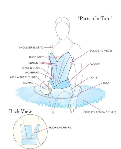 Tutu Anatomy. Credit: Offbeatballerina.com